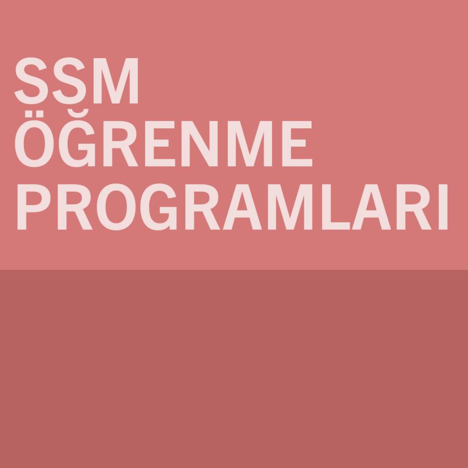 Öğrenme Programları